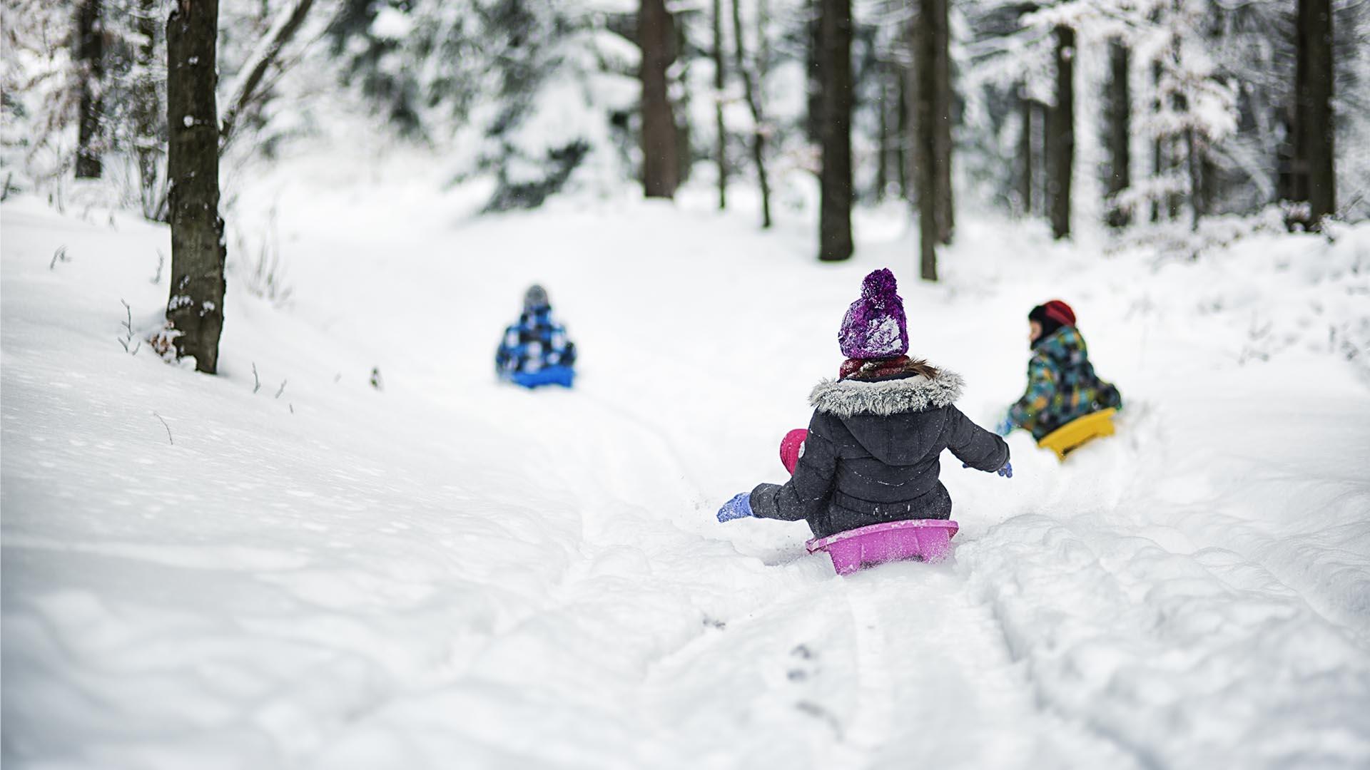 Ulkoilun iloa talvella - keppihevoset